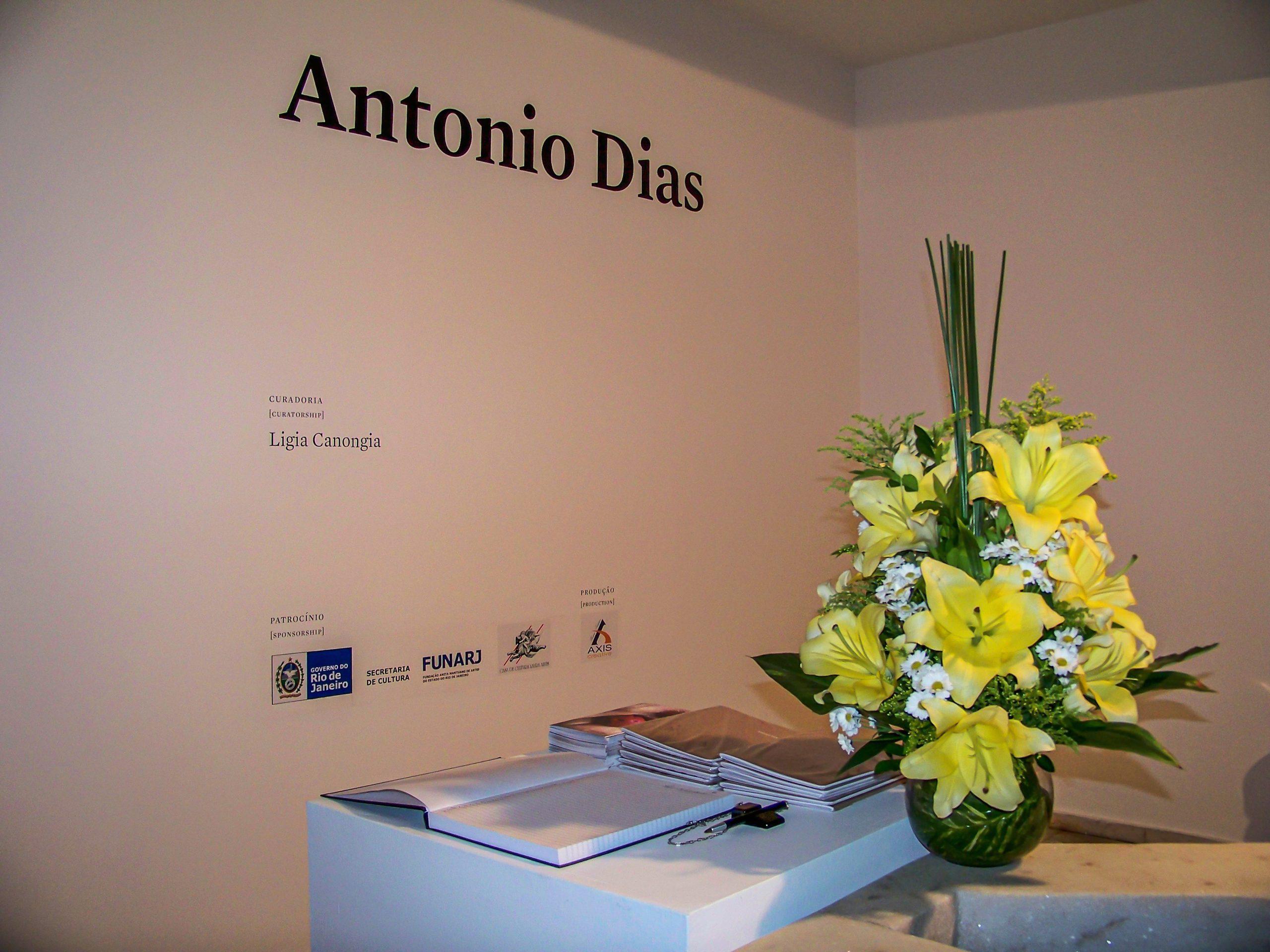 Casa de Cultura Laura Alvim - Exposição Antonio Dias